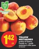 Yellow Nectarines