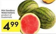 Mini Seedless Watermelons Product of Guatemala