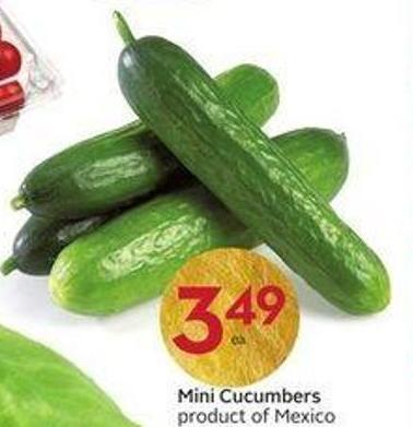 Mini Cucumbers Product of Mexico