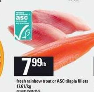 Fresh Rainbow Trout Or Asc Tilapia Fillets