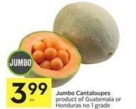 Jumbo Cantaloupes Product of Guatemala or Honduras No 1 Grade