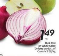 Bulk Red or White Salad Onions
