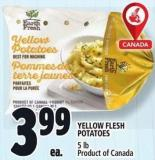Yellow Flesh Potatoes 5 Lb