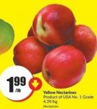 Yellow Nectarines Product of USA No. 1 Grade 4.39/kg