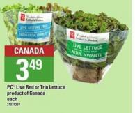 PC Live Red Or Trio Lettuce
