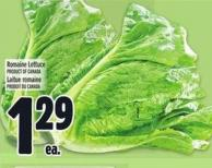 Romaine Lettuce Product of Canada