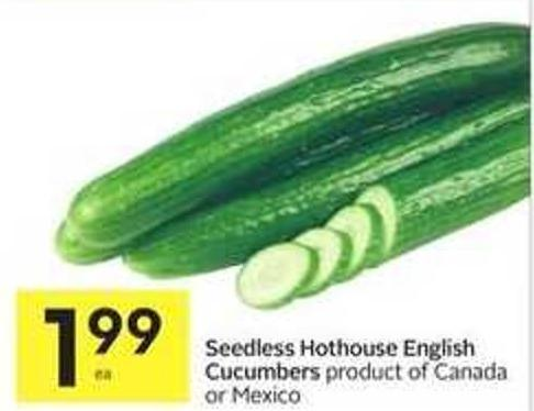 Seedless Hothouse English Cucumbers