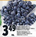 Organic Blueberries 170 G