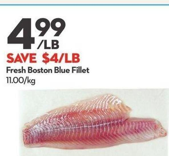 Fresh Boston Blue Fillet