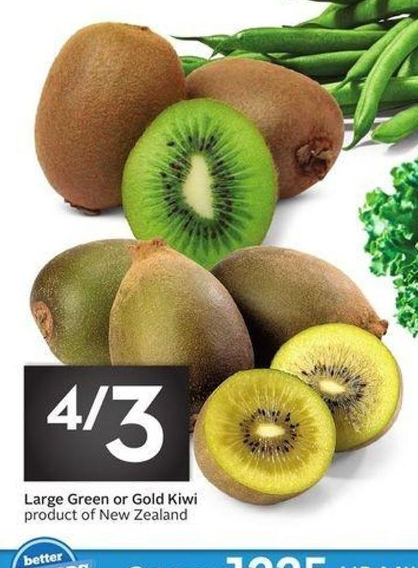 Large Green or Gold Kiwi