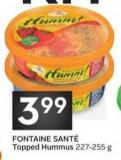 Fontaine Sant' Topped Hummus