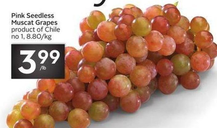Pink Seedless Muscat Grapes