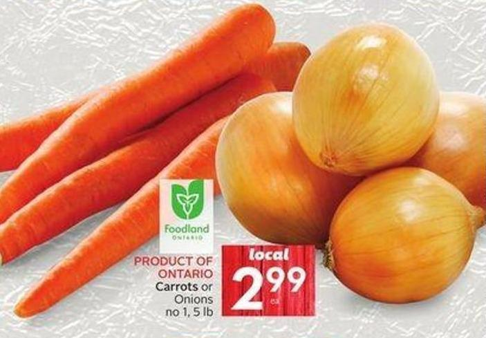 Carrots or Onions No 1 - 5 Lb