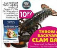 Live Hard Shell Market Lobsters