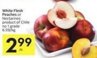 White Flesh Peaches or Nectarines Product of Chile No 1 Grade
