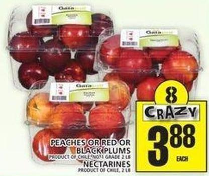 Peaches Or Red Or Black Plums Or Nectarines