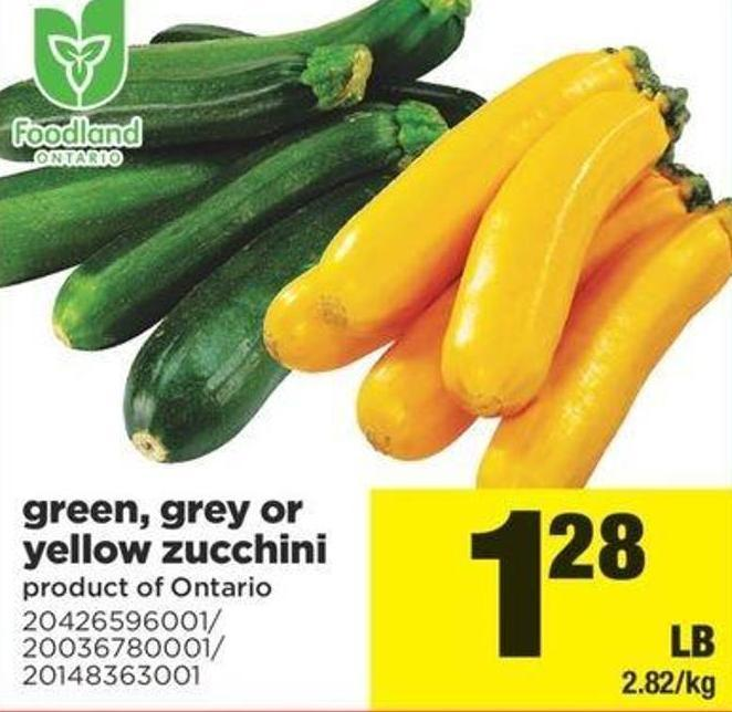 Green - Grey Or Yellow Zucchini