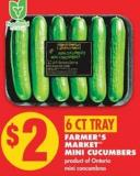 Farmer's Market  Mini Cucumbers - 6 Ct Tray