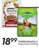 Purina Beneful or Dog Chow 5.3-8 Kg