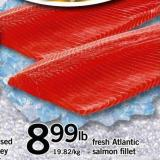 Fresh Atlantic Salmon Fillet