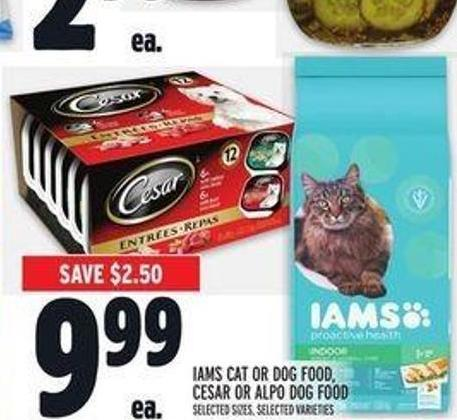 Iams Cat Or Dog Food - Cesar Or Alpo Dog Food