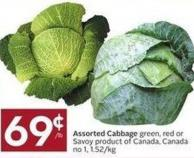 Assorted Cabbage Green - Red or Savoy