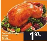 Grade A Fresh Turkey Or Duck