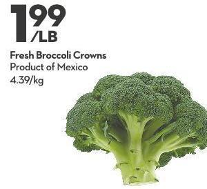 Fresh Broccoli Crowns
