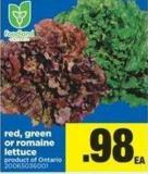 Red - Green Or Romaine Lettuce