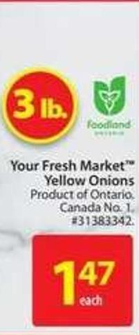 Your Fresh Market Yellow Onions