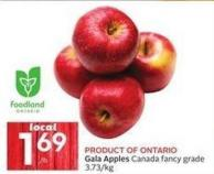 Product Of Ontario Gala Apples Canada Fancy Grade