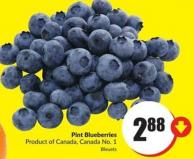 Pint Blueberries Product of Canada Canada No. 1