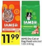 Iams Dry Cat or Dog Food
