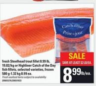 Fresh Steelhead Trout Fillet Or Highliner Catch Of The Day Fish Fillets - 580 G-1.32 Kg