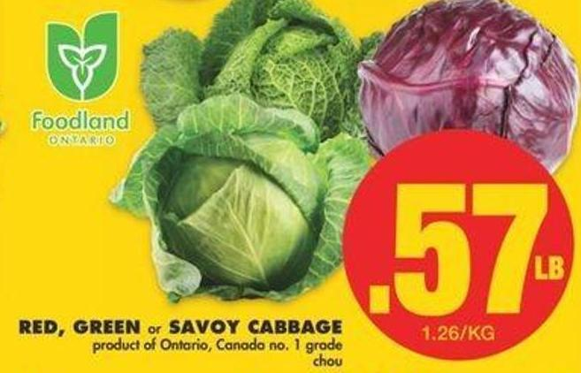Red - Green Or Savoy Cabbage
