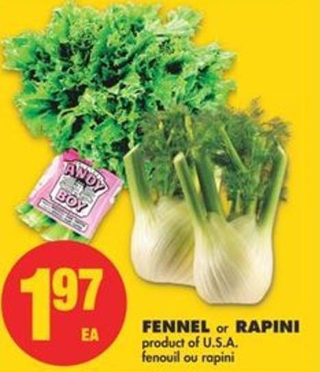 Fennel or Rapini