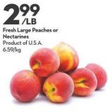Fresh Large Peaches or Nectarines