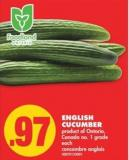 English Cucumber - Each