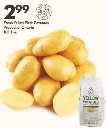 Fresh Yellow Flesh Potatoes