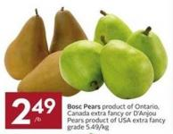 Bosc Pears Product of Ontario - Canada Extra Fancy or D'anjou Pears Product of USA Extra Fancy Grade $5.49/kg