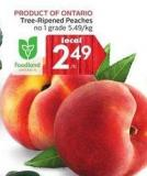 Tree-ripened Peaches No 1 Grade