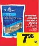Seaquest Colossal Raw White Shrimp - 16-20 Count Per Lb - 300 G