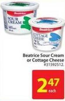 Beatrice Sour Cream or Cottage Cheese