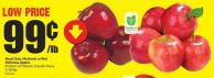 Royal Gala - Mcintosh or Red Delicious Apples