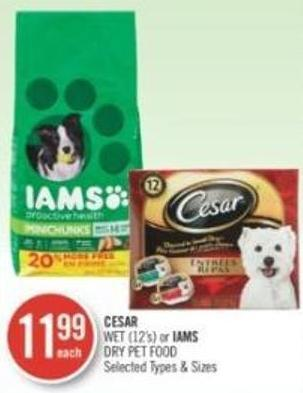 Cesar Wet (12's) or Iams Dry Pet Food