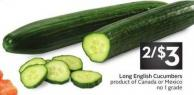 Long English Cucumbers