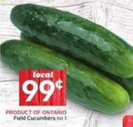 Field Cucumbers No 1