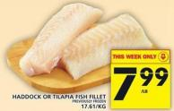 Haddock Or Tilapia Fish Fillet