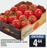 Greenhouse Tomatoes On The Vine - 4 Lb Box