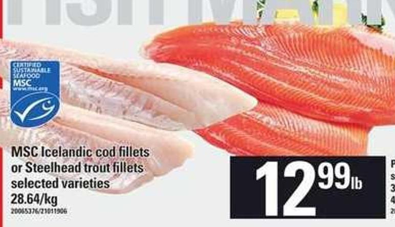 Msc Icelandic Cod Fillets Or Steelhead Trout Fillets
